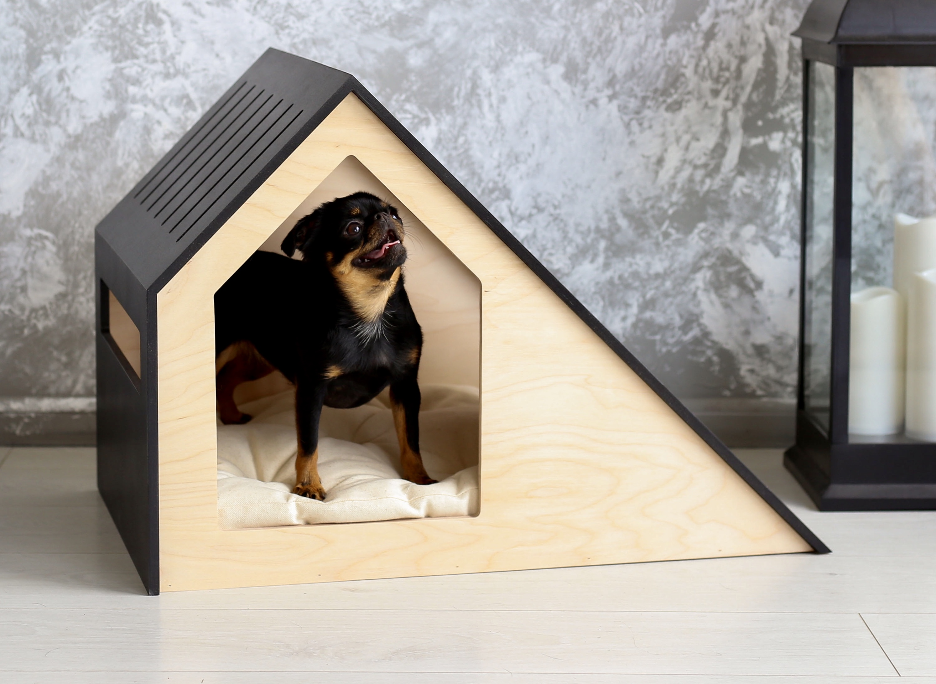 Modern pet house Hamm