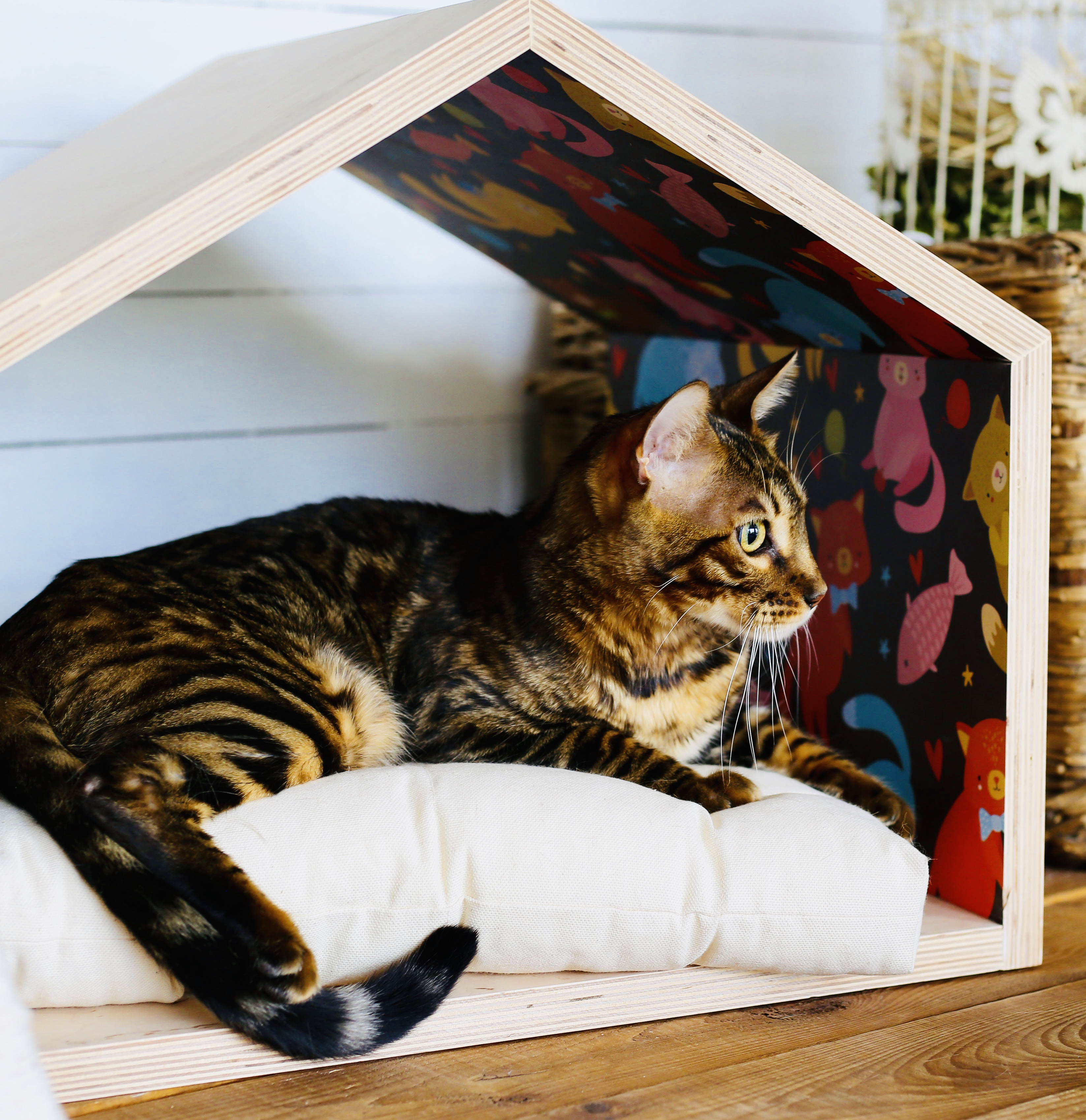 Cat and dog house Woodstock Design