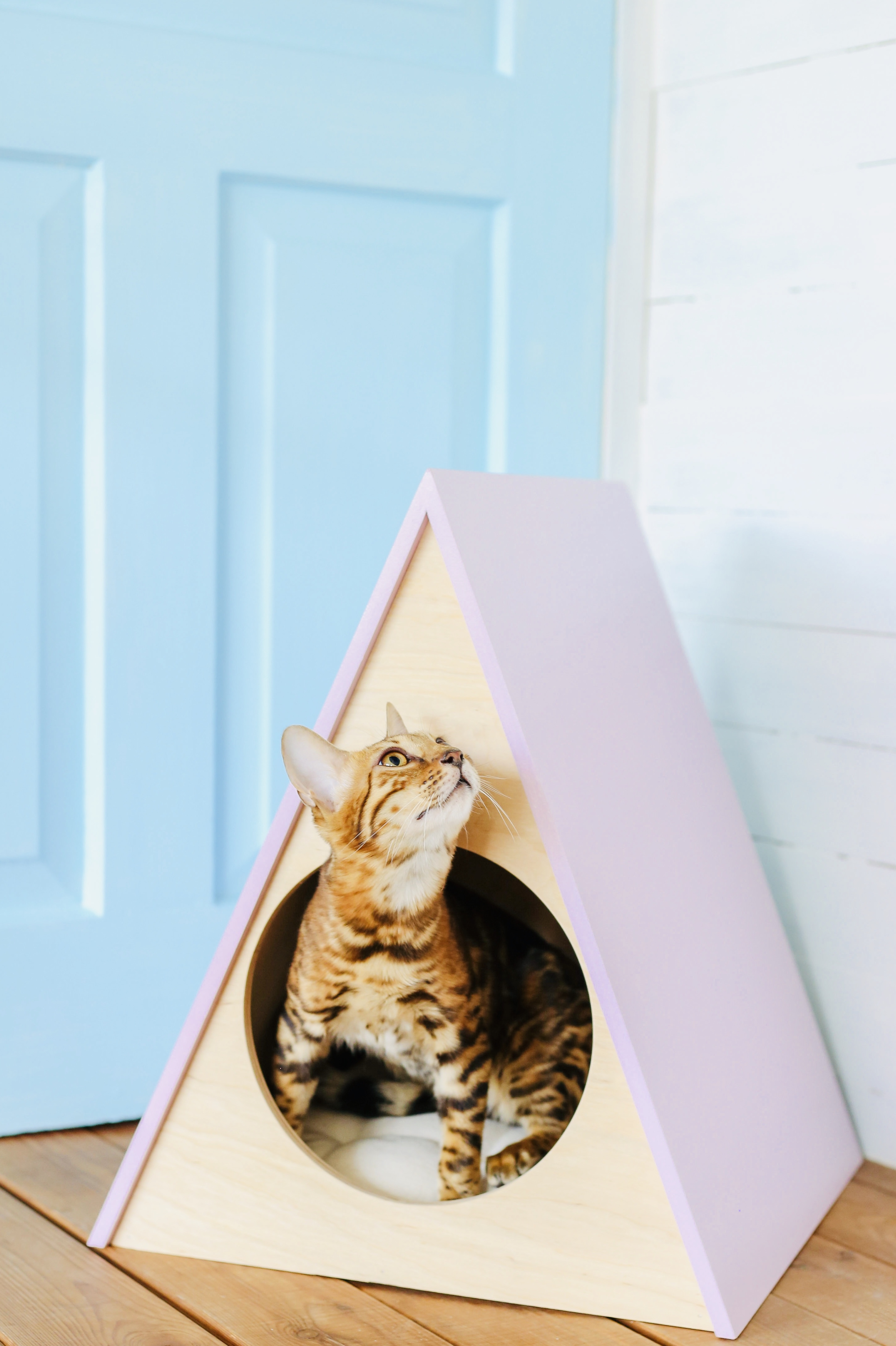 Cat and dog house Rainbow Pink