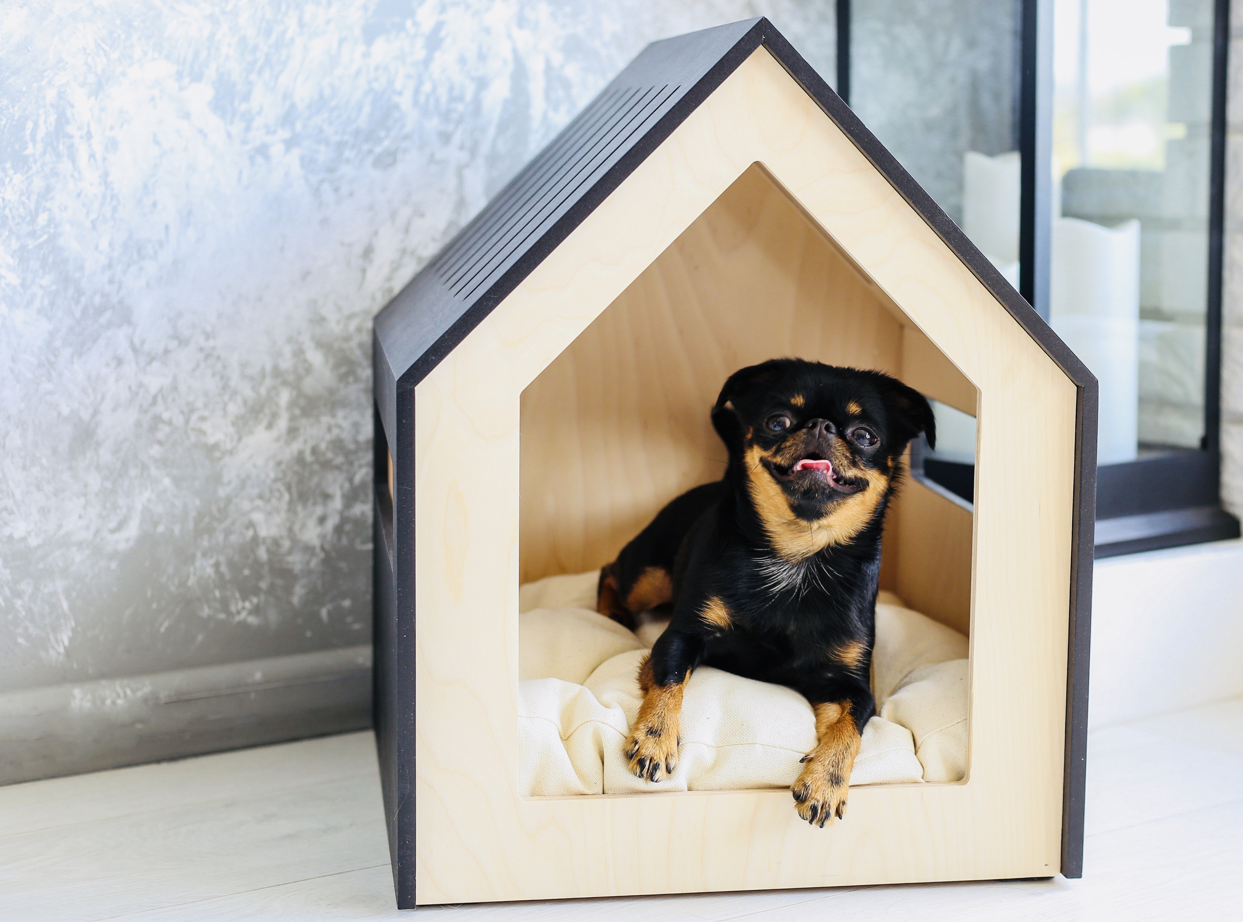 Dog and cat house PetSo